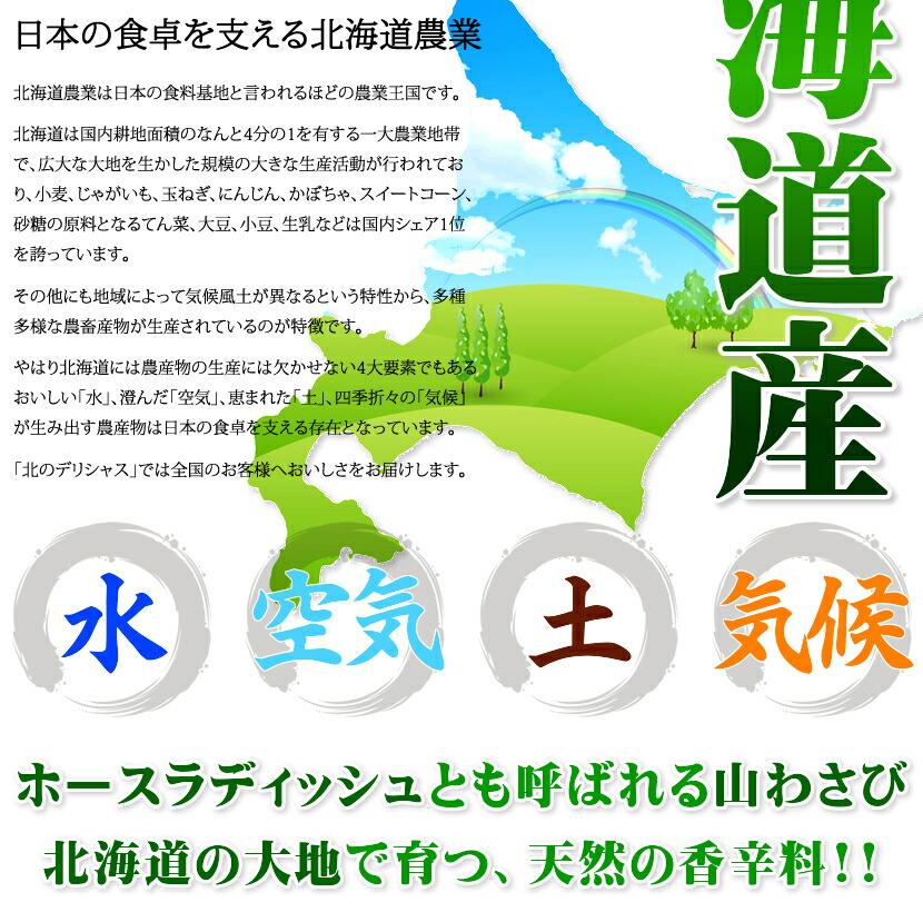 北海道産 山わさび