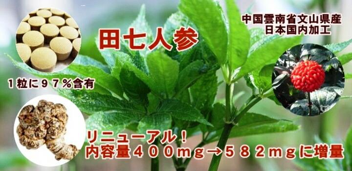 """""""リニューアル 内容量400mg➡582mgに増量!"""