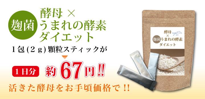 酵母×麹菌うまれの酵素ダイエット1包(2g)顆粒スティックが1日分 約67円!! 活きた酵母をお手頃価格で!!