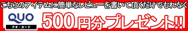 クオカード500円プレゼント