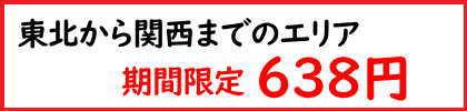 期間限定送料638円〜