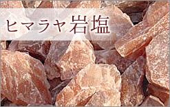 ヒマラヤ岩石