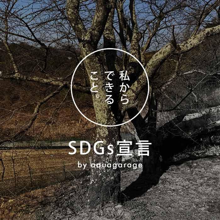 aquagarage(アクアガレージ)は人と環境の未来を大切に考えるSDGsの趣旨に賛同します