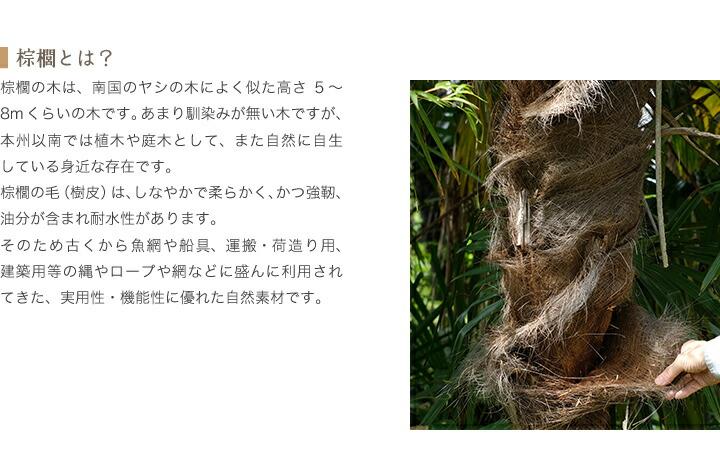 棕櫚 耐水性 自然素材