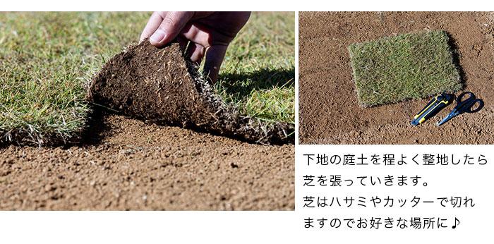 天然高麗芝:静岡県産天然芝。ハサミやカッターで切れます