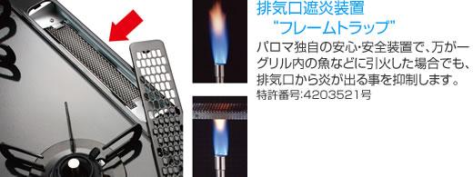 pd-n33-flametrap.jpg