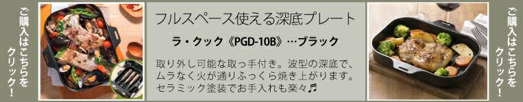 PGD-10B