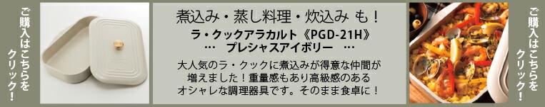 PGD-21H