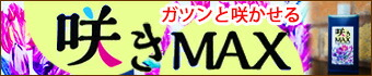 咲きMAX