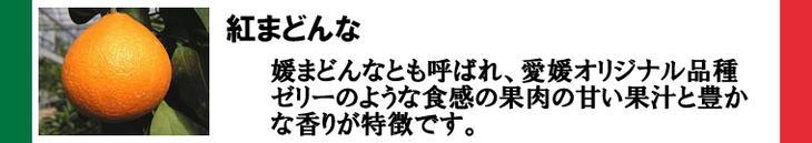 紅まどんな(松山市産)