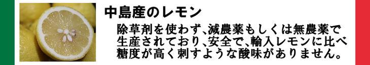 レモン(中島産)