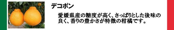 愛媛県産のデコポンジェラート
