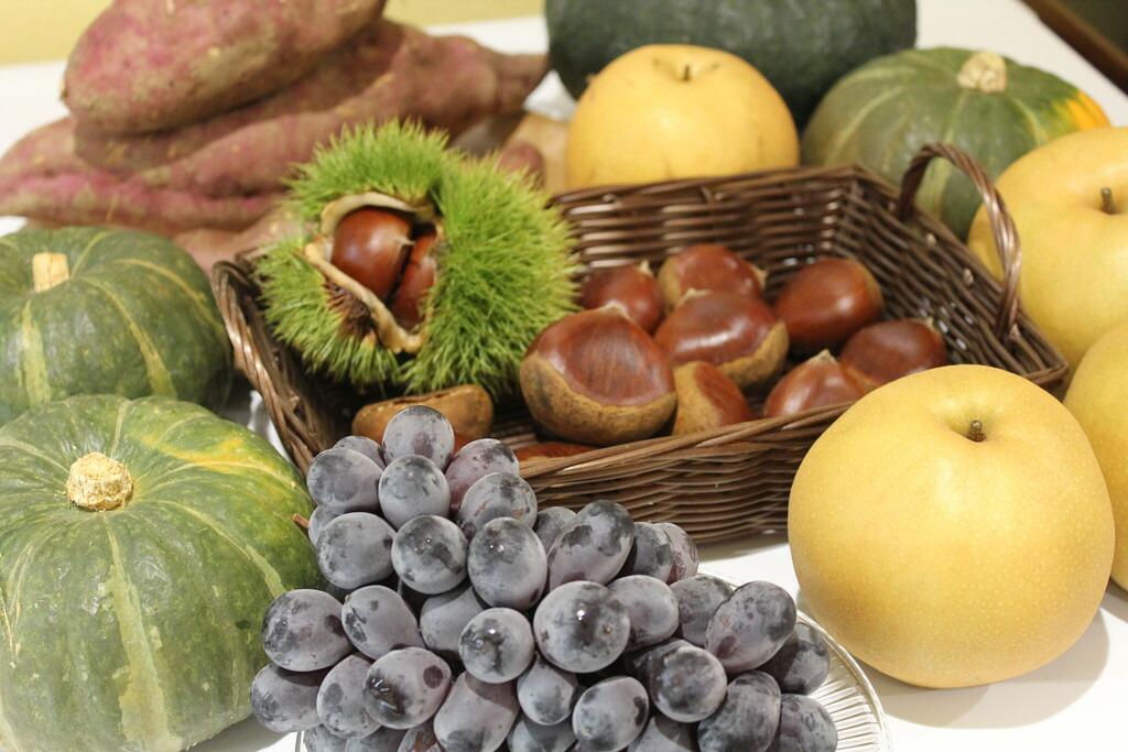 愛媛の秋の味覚、栗、サツマイモ、ブドウ、梨など美味しい素材をジェラートにしました。