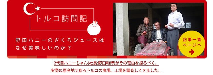 トルコ訪問記 野田ハニーのざくろジュースはなぜ美味しいのか?