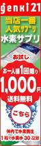 当店一番人気サプリ! 【送料無料】お試し1,000円(税別) 1粒で水素水30リットル分!