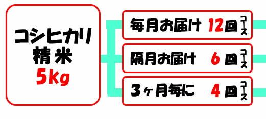 精米購入選択マップ:コシヒカリ