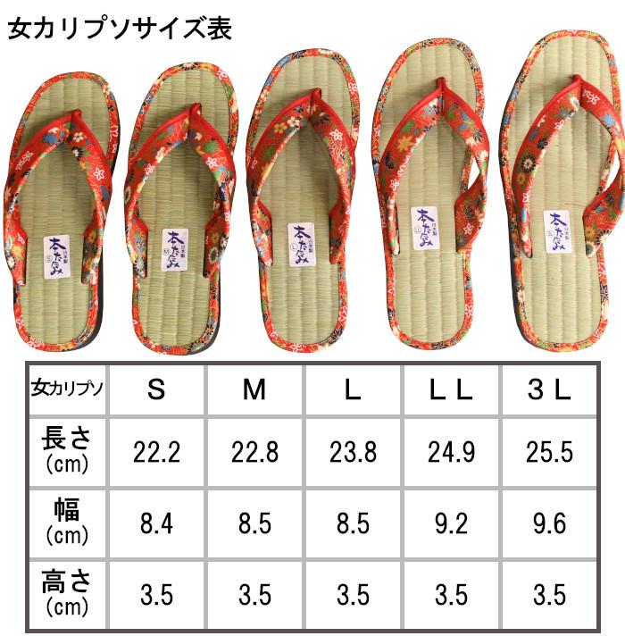 女カリプソサイズ表
