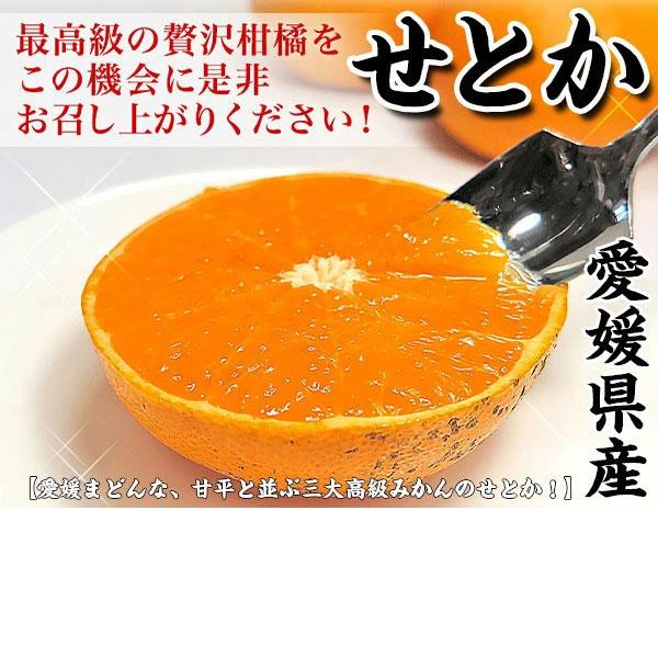 Ehime Translated Setoka 3