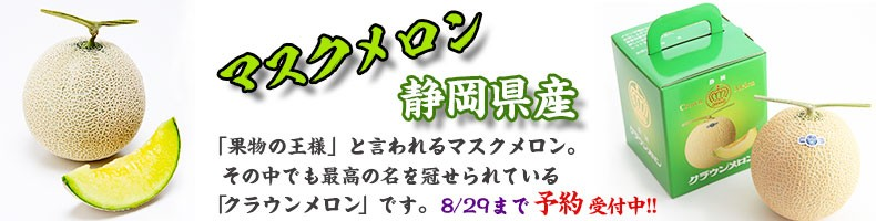 静岡県産メロン