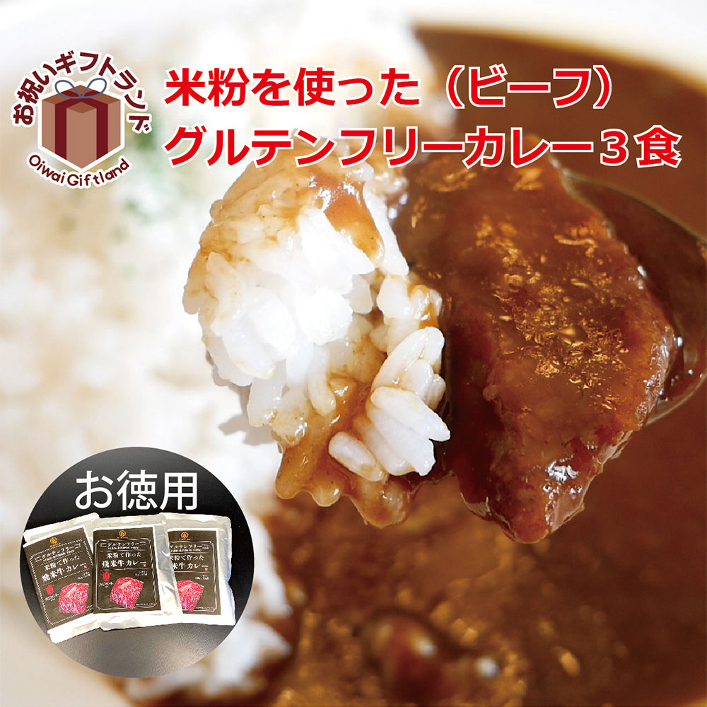 飛米牛入り 飛騨市特産 グルテンフリー カレー 3食 箱なし ビーフ カレー お試しセット GFC-03N