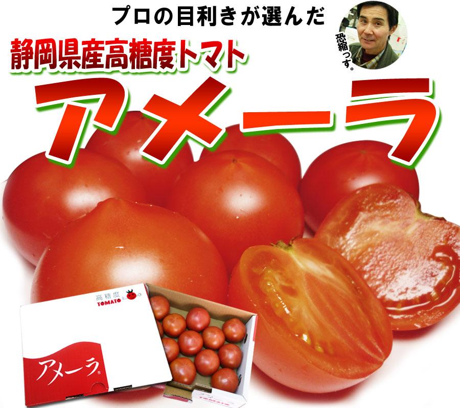 高糖度フルーツトマト アメーラ 静岡県産 甘い 栄養満点