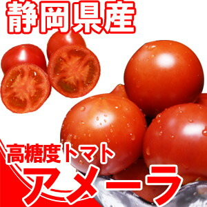 静岡県産 高糖度トマトアメーラ