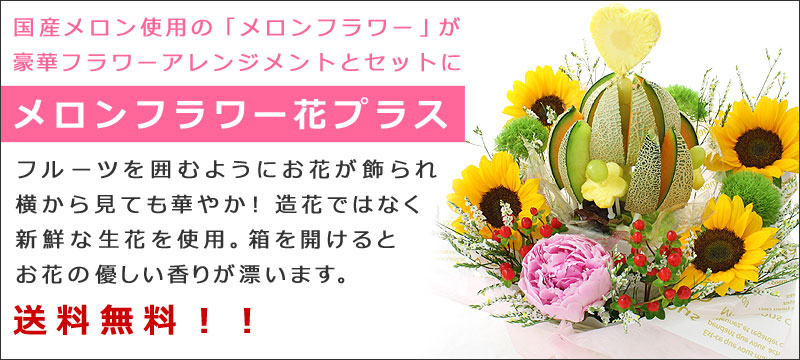 メロンフラワー 花プラス