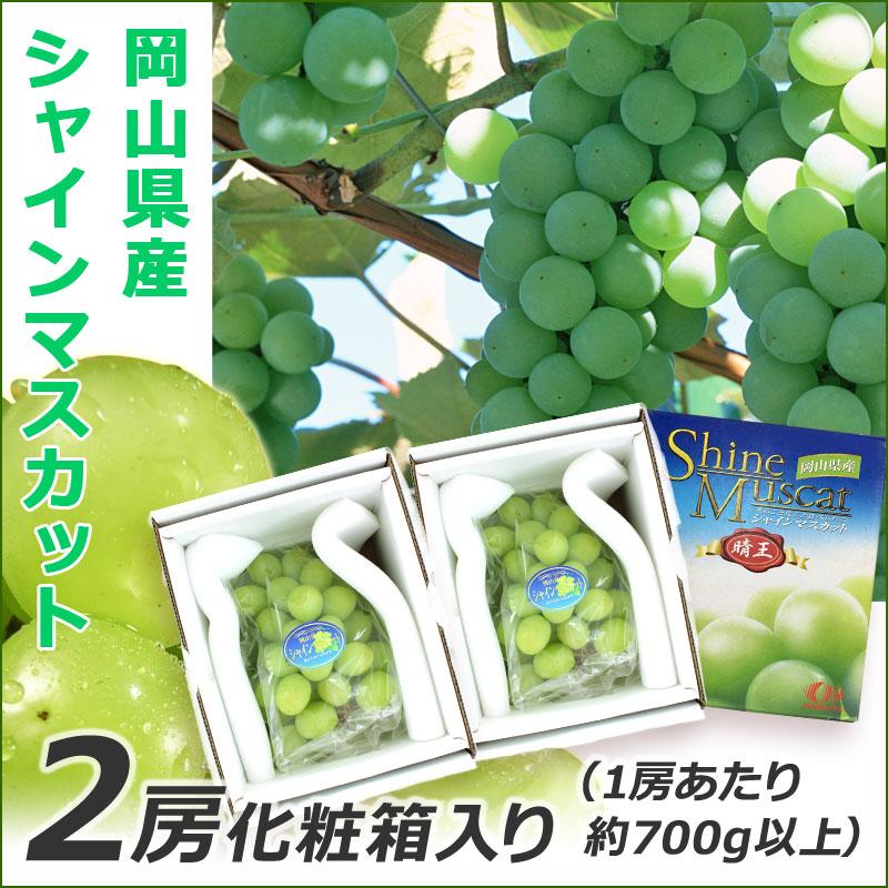 岡山県産 シャイン