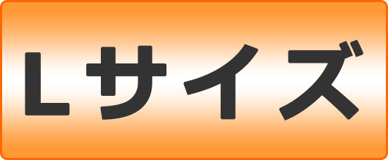 2万円コース
