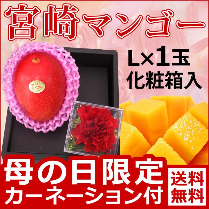 母の日宮崎マンゴー1玉化粧箱