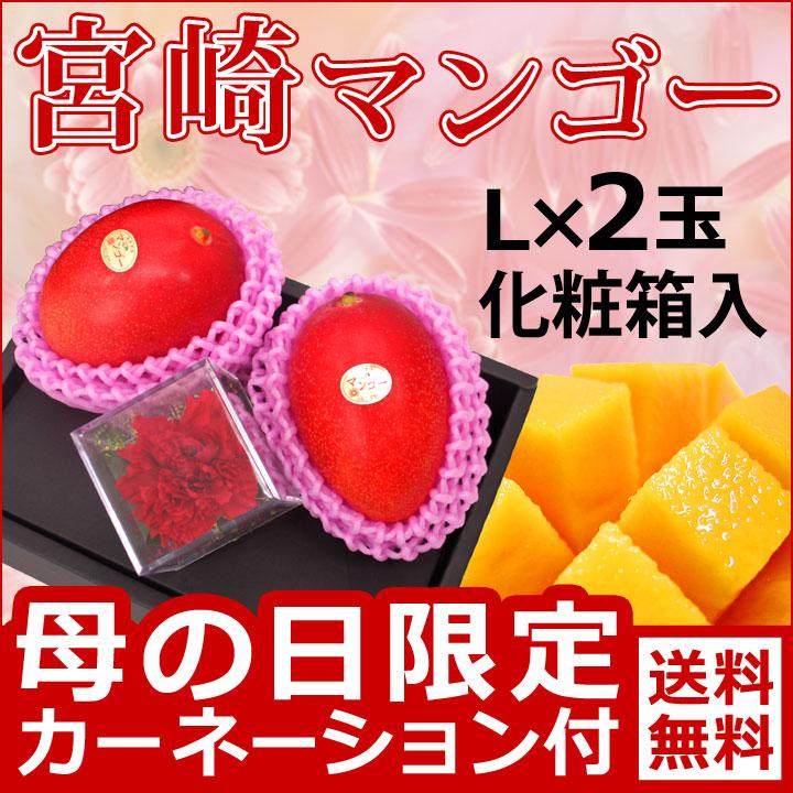 母の日宮崎マンゴー2玉化粧箱