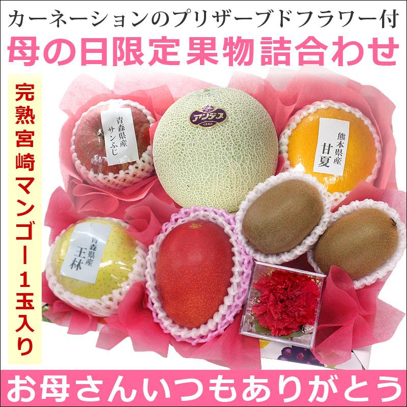 母の日限定 宮崎マンゴー(L)1玉入り果物詰合わせ