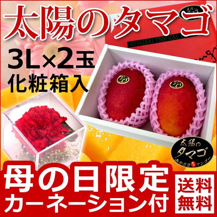 母の日宮崎マンゴー太陽のタマゴ2玉化粧箱