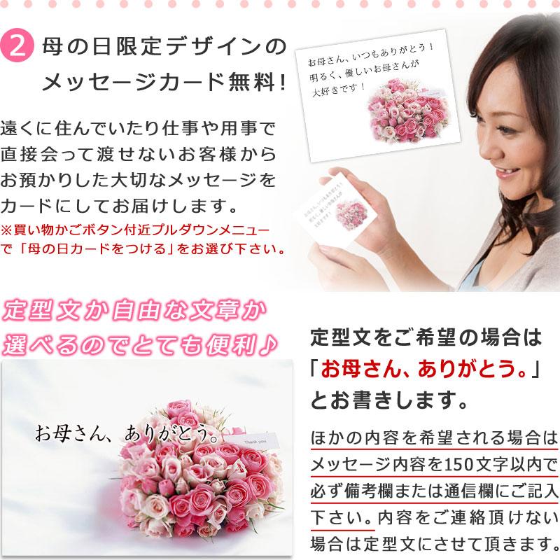 メッセージアップル入りフルーツセット 母の日限定デザインメッセージカード付き