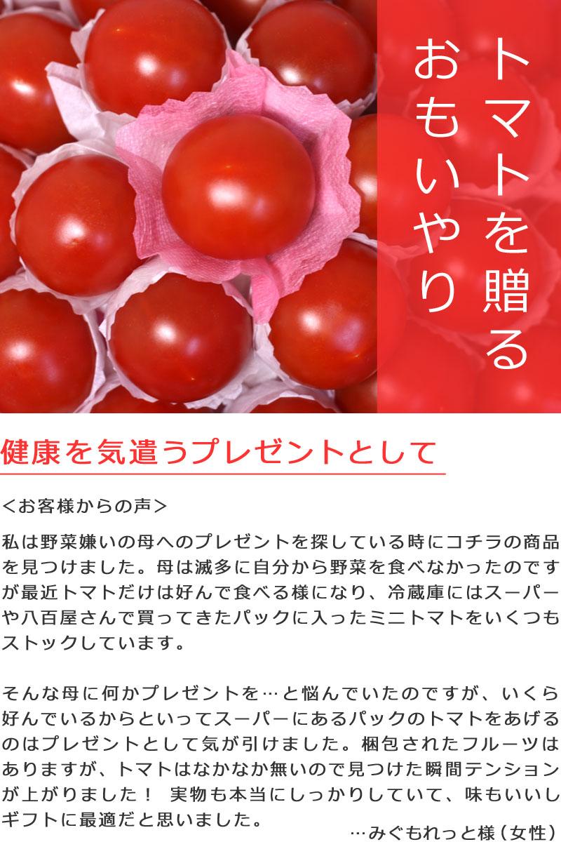 ハッピートマトバスケットのトマトを贈るおもいやり