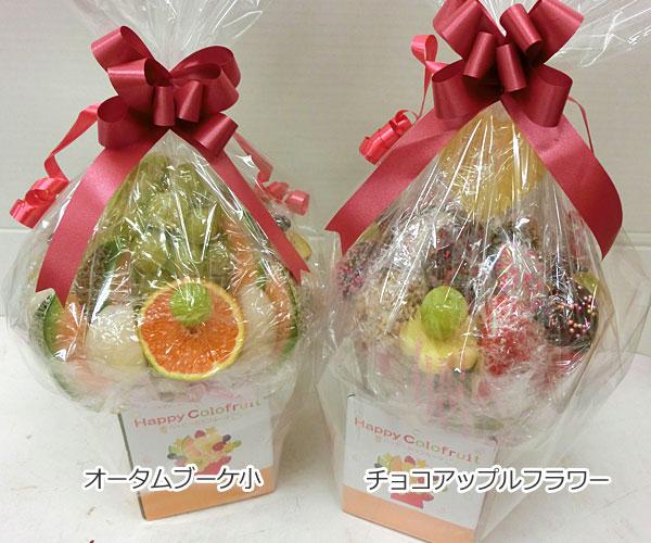 ハッピーカラフルーツ フルーツフラワー オータムブーケ小 チョコアップルフラワー