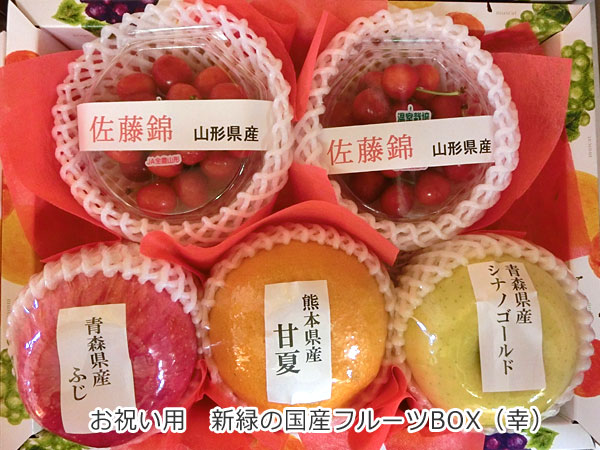 お祝い用 新緑の国産フルーツBOX(幸)