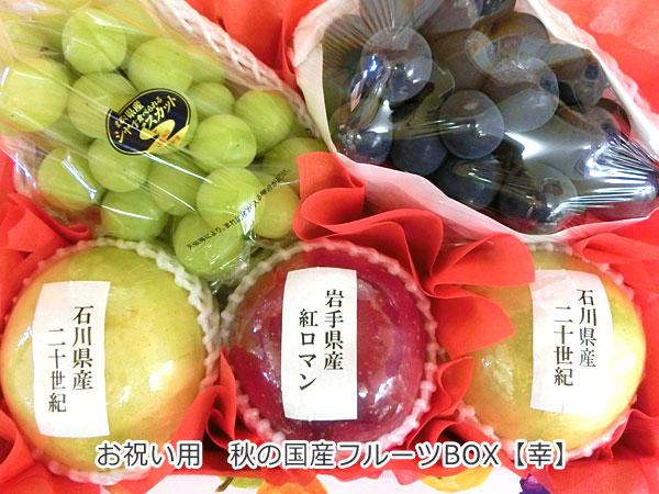 お祝い用 秋の国産フルーツBOX【幸】