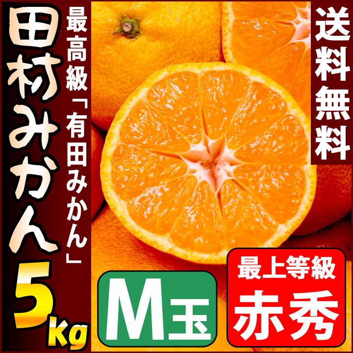田村みかん 赤秀 5kg Mサイズ 約47個前後入り