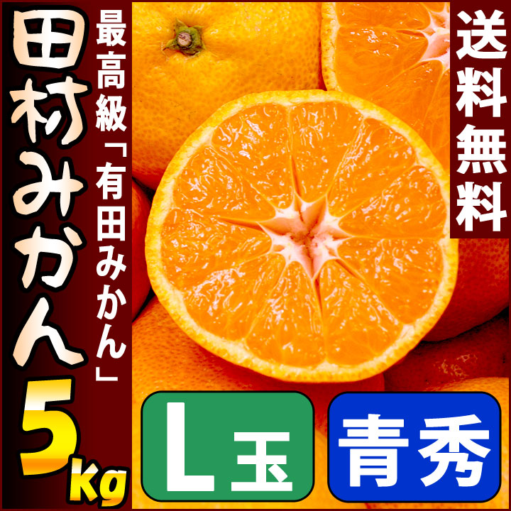 田村みかん 青秀 5kg Lサイズ 約76個前後入り