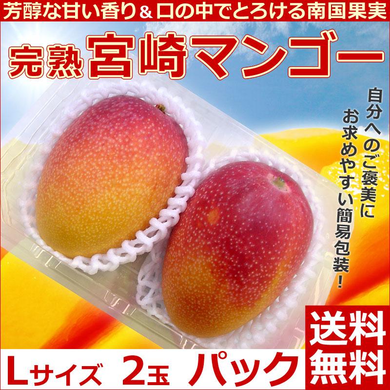 宮崎マンゴー2玉パック