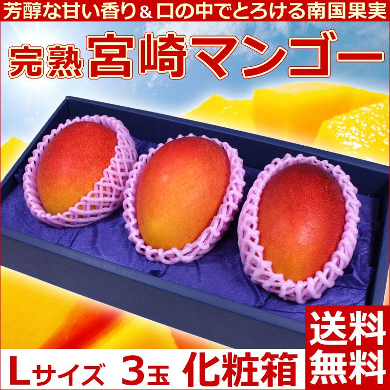 宮崎マンゴー3玉化粧箱