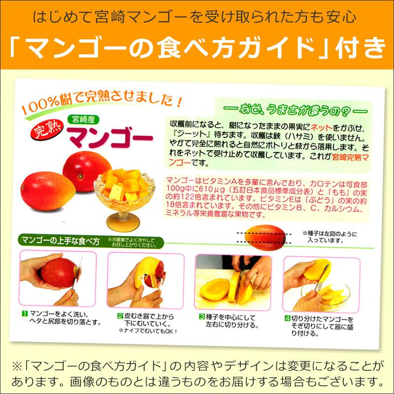食べ方ガイド付き