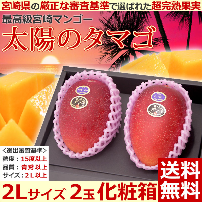 宮崎マンゴー太陽のタマゴ2L2玉化粧箱