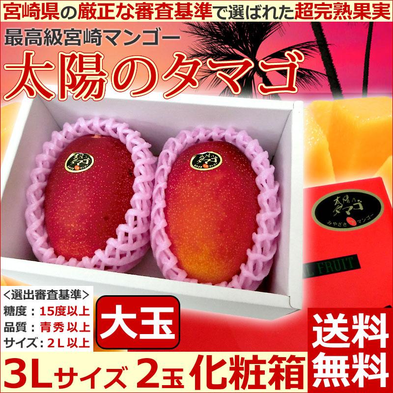 宮崎マンゴー太陽のタマゴ3L2玉化粧箱