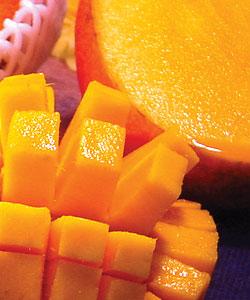 最高級マンゴーの太陽のたまご