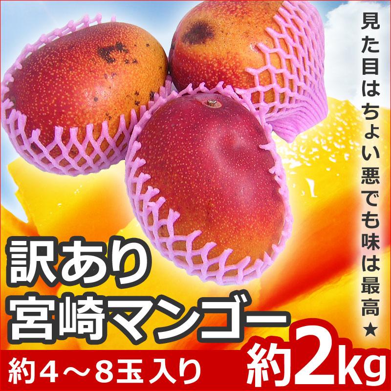 訳あり宮崎マンゴー2kg