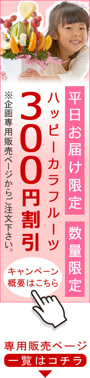 300円オフキャンペーン