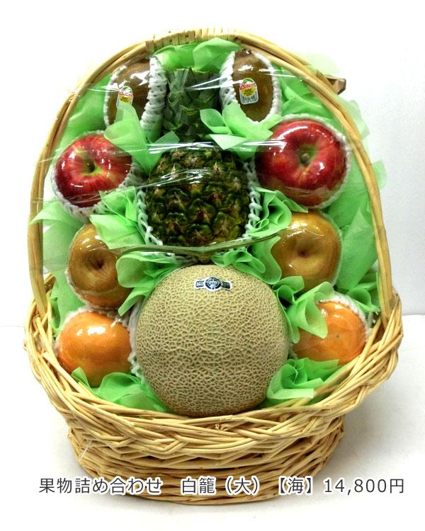 お祝い用果物詰め合わせ お祝い籠盛 果物詰め合わせ白籠(大)【海】