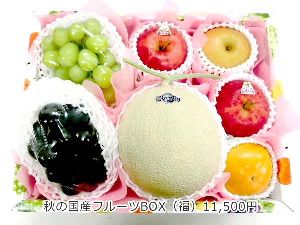 秋の国産フルーツBOX(福)